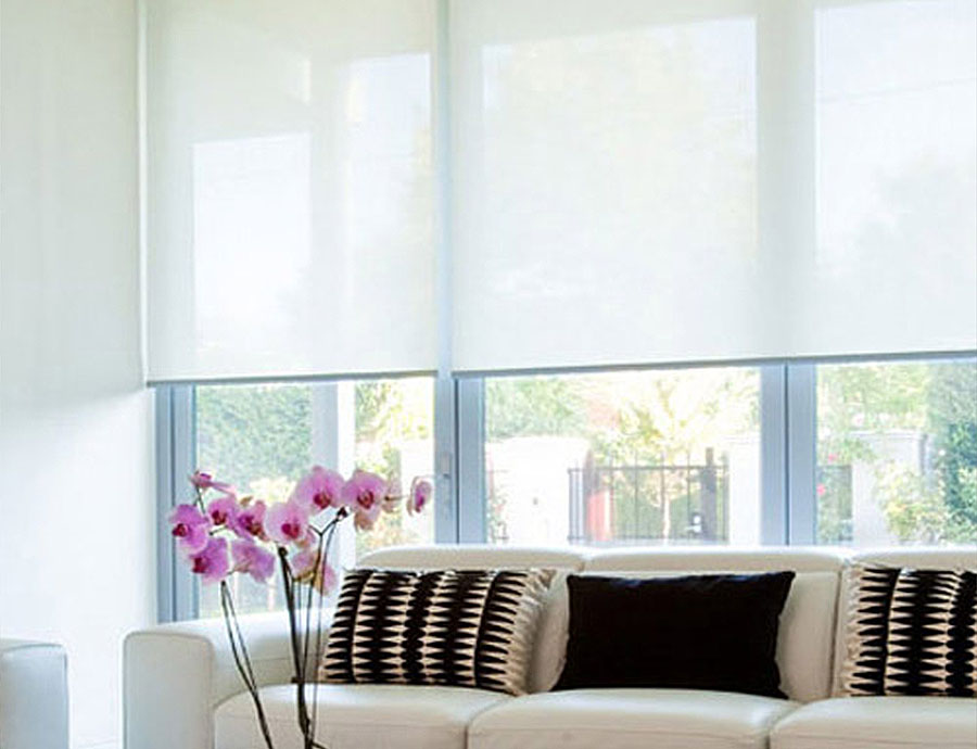 Translucent Blinds